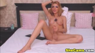 Beautiful Teen Shemale Webcam